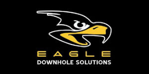 <strong>Eagle Downhole Solutions</strong> - Conroe, TX - (832) 592-3959